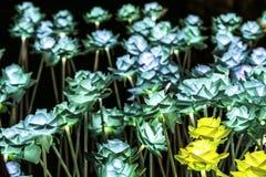 Konstgjorda blommor för nattfärgljus arkivfoto