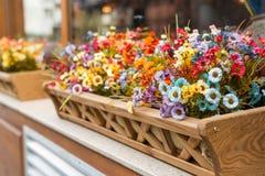 Konstgjorda blommor i asken utanför fönstret Arkivbild