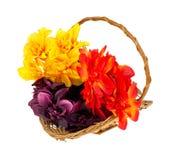 Konstgjorda blommor i korg Arkivfoto