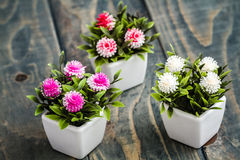 Konstgjorda blommor i vita blomkrukor Royaltyfria Bilder