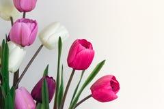 Konstgjorda blommor som symboliserar tillsammans att att bry sig som ger sig, förälskelse, ro Royaltyfria Foton