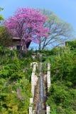 konstgjorda blomstra fallskulltrees arkivfoto