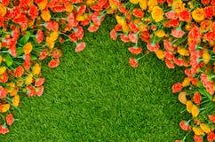 Konstgjorda gräsfält och blommor Royaltyfri Fotografi