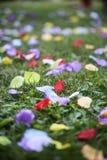 Konstgjorda kronblad på gräset Arkivbilder