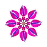 Konstgjorda Orquidea Royaltyfri Fotografi
