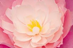 Konstgjorda pappers- blommor som göras av handen Härlig dekor Royaltyfria Bilder