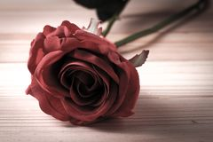 Konstgjorda röda rosor på en trätappning tonar Royaltyfria Foton