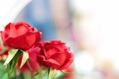 Konstgjorda röda rosor på suddig bakgrund arkivbilder
