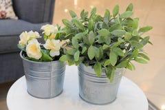Konstgjorda rosor och gröna växter i metallkrukor Arkivfoton