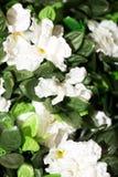 Konstgjorda vita blommor Royaltyfri Foto