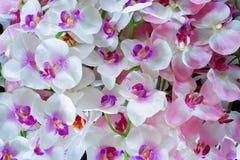 Konstgjorda vita och rosa orkidéblommor arkivfoton