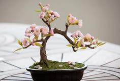 Konstgjort bonsaiträd med blommor Fotografering för Bildbyråer