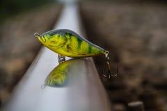 Konstgjort fiskebete på rov- fisk Royaltyfria Bilder