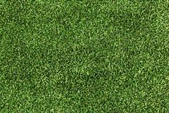 konstgjort gräs Royaltyfri Fotografi