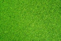 konstgjort gräs fotografering för bildbyråer