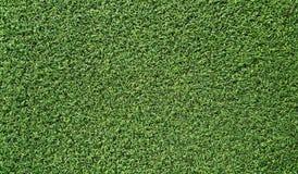 konstgjort gräs Royaltyfria Bilder