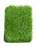 Konstgjort gräs som isoleras på vit bakgrund Arkivfoto