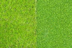 Konstgjort gräs texturerar royaltyfri foto