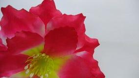 Konsthantverkblommor Royaltyfria Bilder