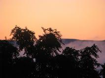 Konstig dimma Fotografering för Bildbyråer