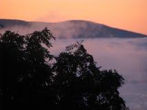 Konstig dimma Arkivbilder
