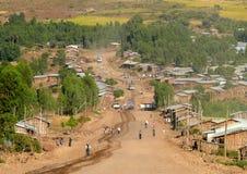 Konstiga byinvånare som når för i Azezo, Etiopien - November 23, 2008. Arkivbild