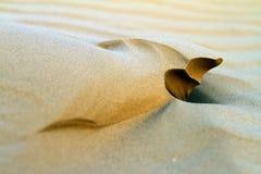 Konstiga sandbildande, som ser som skulpturer som skapas av vind royaltyfri bild