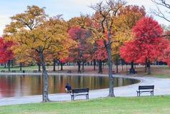 Konstitutionella trädgårdar för Washington DC i höst arkivfoton