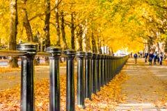 Konstitutionshügelstraße gezeichnet mit Bäumen in Green Park, London lizenzfreie stockbilder