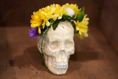 Konstnärlig atmosfär: vas med kulört vatten, idérikt lynne, skalle i blommakrans Arkivbild