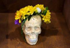 Konstnärlig atmosfär: vas med kulört vatten, idérikt lynne, skalle i blommakrans Royaltyfri Fotografi
