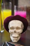 Konstnärlig atmosfär: vas med kulört vatten, skalle i basker Idérikt lynne Royaltyfri Fotografi
