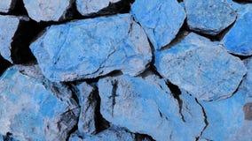 Konstnärlig blå ödla på stenblock arkivfoton