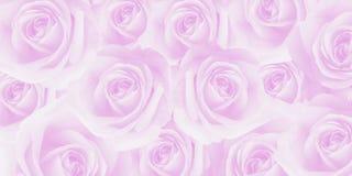 Konstnärlig söt härlig mjuk rosa rostextur Arkivbild