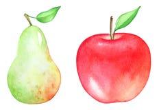 Konstnärlig vattenfärgillustration av äpplet och päronet Royaltyfria Foton