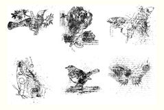 konstnärliga fågelfjärilar blommar set sex Royaltyfria Foton