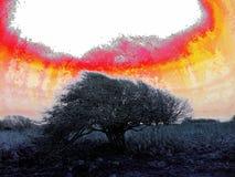 Konstnärligt läskigt windblown träd - kärn- stil stock illustrationer