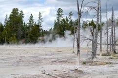KonstnärPaintpots Yellowstone nationalpark, Wyoming Arkivfoton