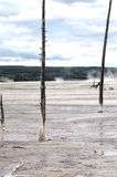 KonstnärPaintpots Yellowstone nationalpark, Wyoming Royaltyfri Foto