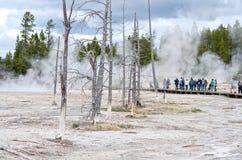 KonstnärPaintpots Yellowstone nationalpark, Wyoming Fotografering för Bildbyråer
