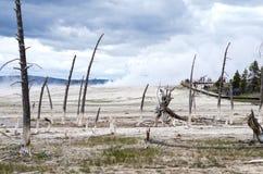 KonstnärPaintpots Yellowstone nationalpark, Wyoming Arkivbild