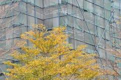 Konstruieren des Gebäudes und der Anlage Stockbild