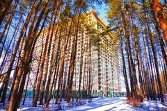 Konstruktion av ett nytt hus på kanten av skogen Arkivfoton