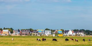 Konstruktion av nya hus i landskapet av norr Holland nära Royaltyfria Foton