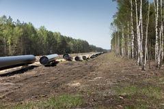Konstruktion av r?rledningen av sm?lt naturgas fr?n LNGterminalen p? Swinoujscie i Polen royaltyfria bilder