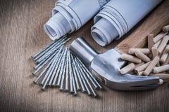 Konstruktion planerar låspinnar för snickeri för jordluckrarehammaren, och metall spikar Royaltyfri Foto