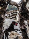 Konstruktioner med fjädrar på den Kukeri festivalen Presponedelnik i Shiroka Laka, Bulgarien arkivbild