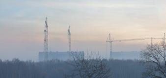 Konstruktionskranar i morgondimman Arkivfoto