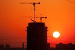 Konstruktionskranar på soluppgång arkivfoto