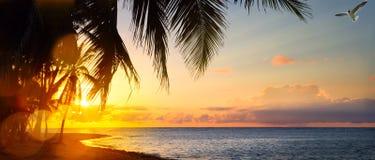 Konstsoluppgång över den tropiska stranden Arkivbild